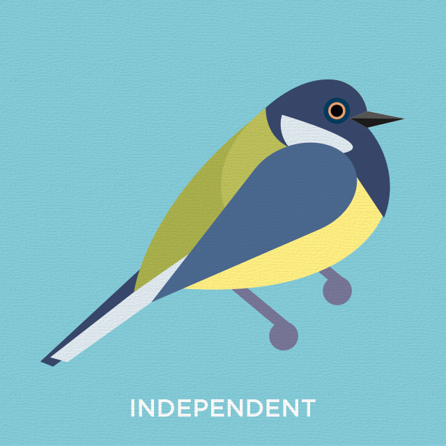 Independent blue tit
