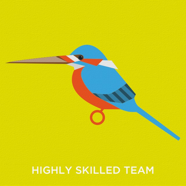 Skilled kingfisher